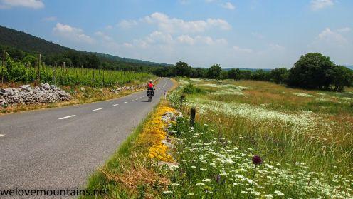 Quiet roads in Slovenia