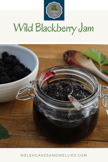 Wild Blackberry Jam Recipe