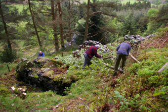 Clearing undergrowth to expose the wheel-pit of the winding wheel
