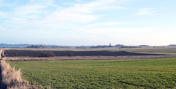 Jütland Landschaft