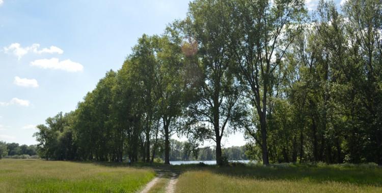 Natur Deutschland