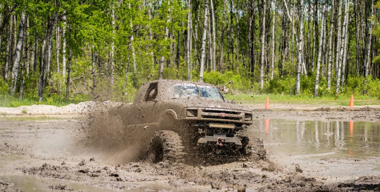 Offroad-wald
