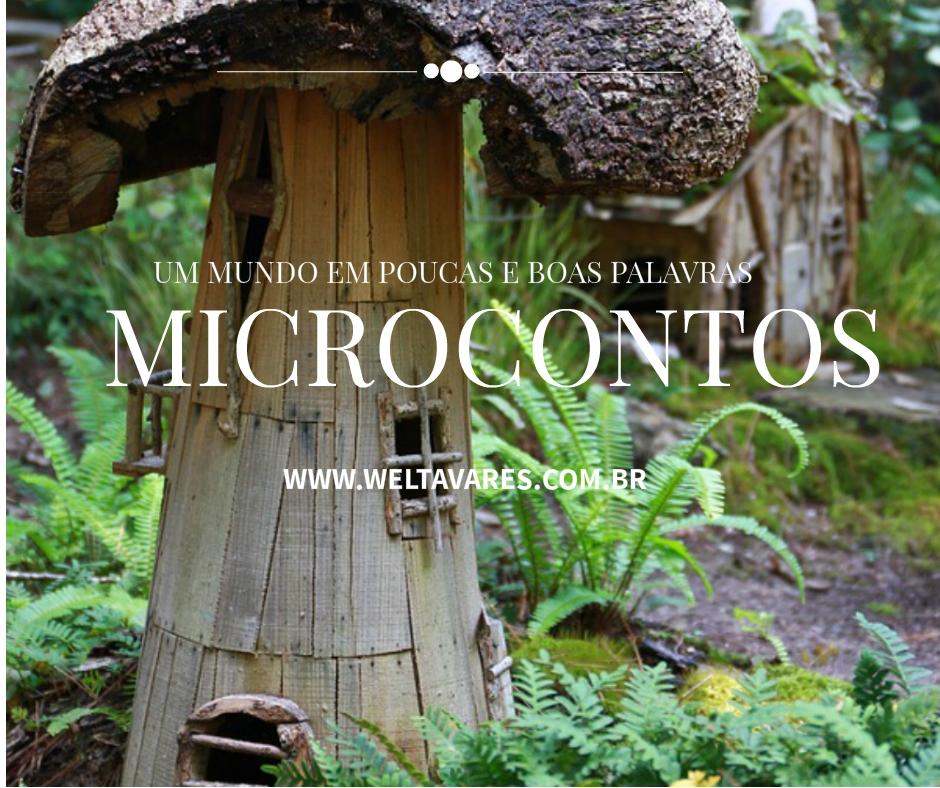 Microcontos 4