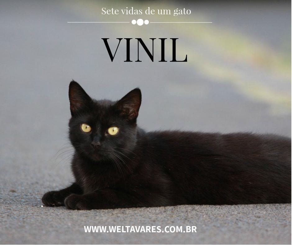Vinil - Wel Tavares