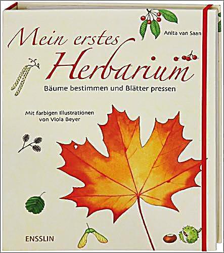 Mein erstes Herbarium, Bäume bestimmen und Blätter pressen
