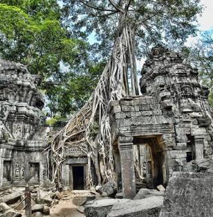 Die beeindruckenden Tempel von Angkor in Kambodscha.