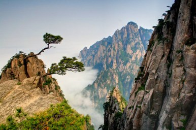 Best of China-113