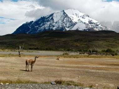 Chile-132