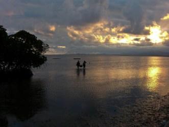 Fiji-25