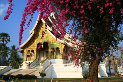 Laos-16