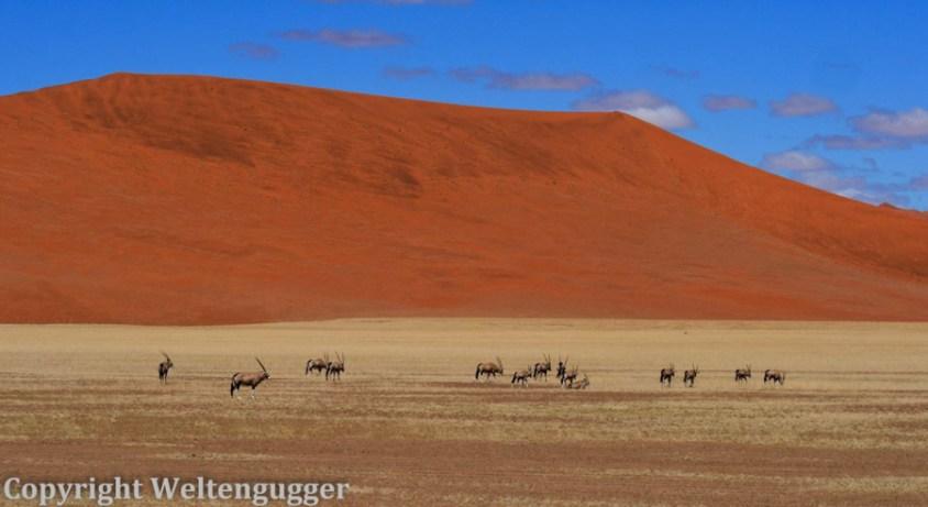 Namibia-088