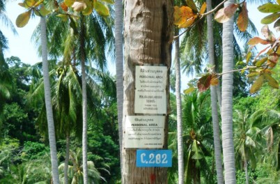 Thailand Westküste-38