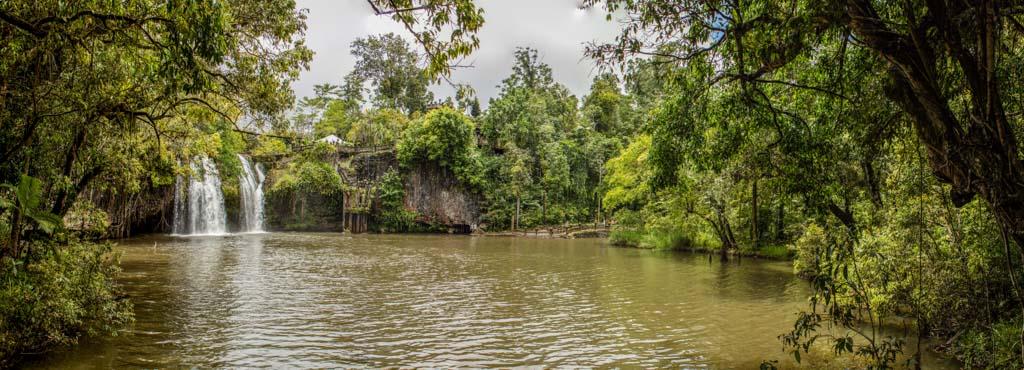 Crocodiles' territory