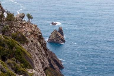 Rock island at Cape Raoul