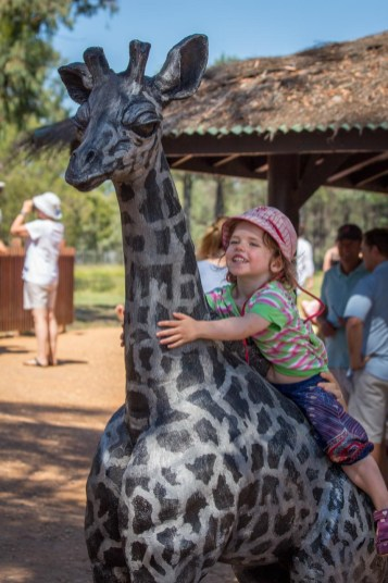 Giraffe jockey