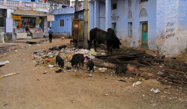 Die andere Seite Indiens