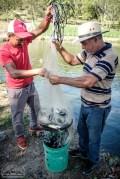 Richtig urtümlicher Fischfang am Sonntag. So sieht in Santiago ein erholsamer Tag aus. Sonst müssen alle immer arbeiten.