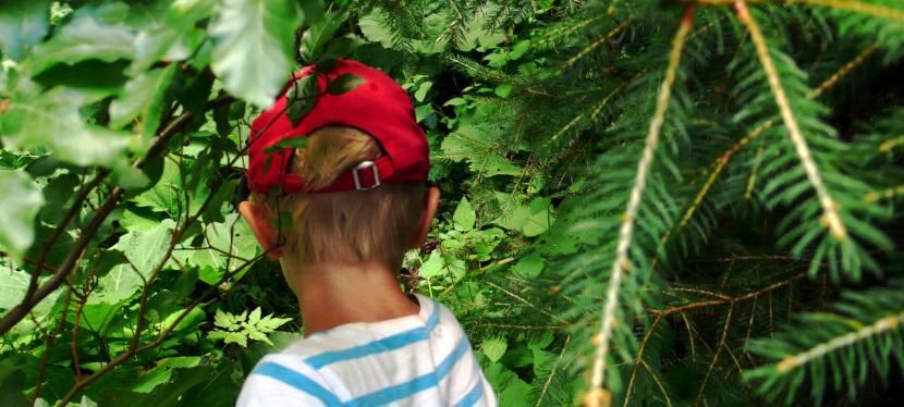 Nationalpark Kalkalpen: Drei Tage Wildnis