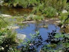 Im Tal haben sich diese kleinen Seen gebildet