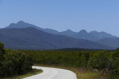 Unser Weg – im Hintergrund die Tsitsikamma-Berge