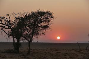 Ungewöhnlich dunstig: Der Sonnenaufgang in der Namib.