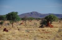 In der Mitte von Namibia werden die Temperaturen wieder angenehmer.