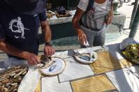 Teamwork: Johann filetiert, Barbara salzt den köstlichen Fisch.