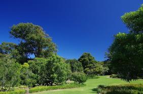 Der Botanische Garten in Kirstenbosch wirkt wie ein Paradies...