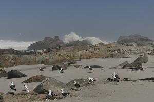 ... außerdem eine wilde Atlantikküste...