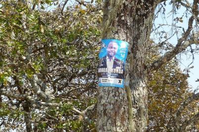... und die Kandidaten hängen noch immer an den Bäumen