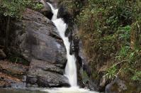 Das Ziel einer langen Wanderung: Der Mkuzhi-Wasserfall liegt mitten im Bergregenwald. Jetzt, am Ende der Trockenzeit, führt er nicht viel Wasser.