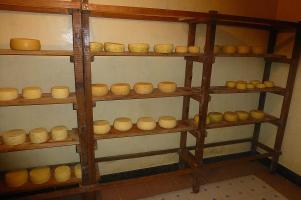 Das Käseregal in der Molkerei ist gut gefüllt.