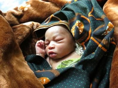 Die Neugeborenen haben noch eine recht helle Hautfarbe. (Foto: Dr. Karl Eiter)