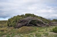 Hier ist es oft sehr windig.