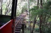 ... und passiert tief im Wald abenteuerliche Flussüberquerungen.