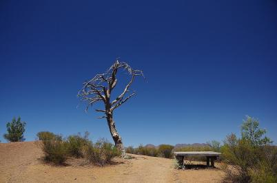 In der Ferne unser Ziel – die Berge von Ikara-Flinders Range...