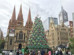 Eines der prächtigeren Exemplare steht in Melbourne.