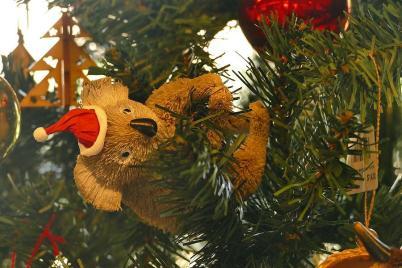 Australischer Weihnachtbaumschmuck – in den Tannen hängen kleine Koalabärchen...