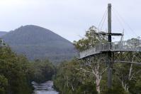 Über einige Hängebrücken im Tal des Huon River ging es hoch hinaus auf den Tahune Airwalk: Die Kleine im Bild ist Babsi.