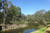 Malerisch schlängelt sich der Yarra River durch die Großstadt Melbourne.