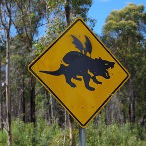 Australische Schilderlehre