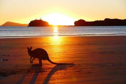 S007 Sonnenaufgang am Kängurustrand/Australien