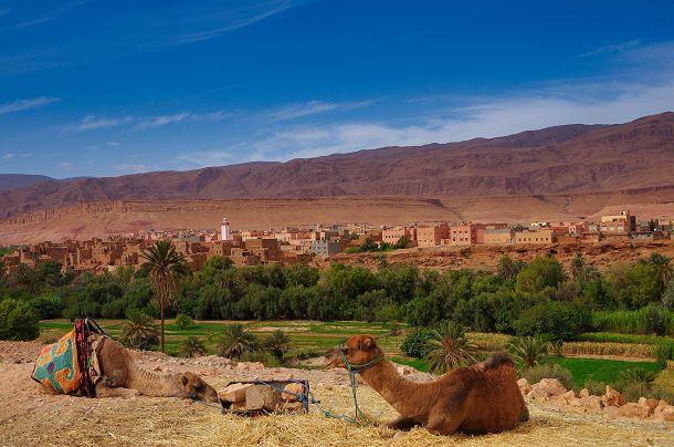 statistik-marokko-c