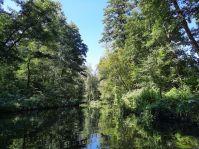 Die Tour durch den Gosener Graben erinnerte uns an die Australischen Everglades.