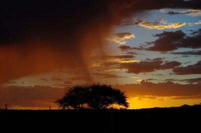 Regenzeit in Namibia