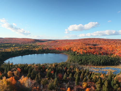 7 of the HOTtest Spots for Fall Colors in MN