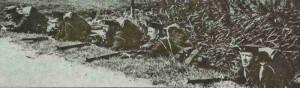 Britische Royal Marines 1914
