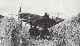 Spitfire IX der polnischen 308. RAF-Squadron