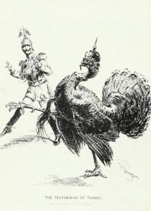 Teutonisierung der Türkei