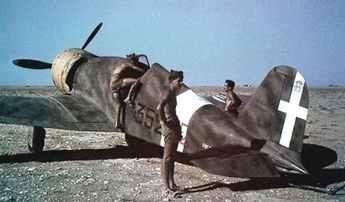 Fiat G.50 in Nordafrika